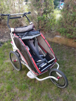 Thule chariot 2 stroller