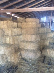 Straw Bales small squares
