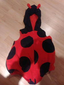 Little Lady Bug Costume 6-9 Months
