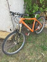 Specialized mountain bike for sale!