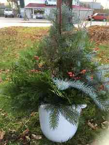 Holiday Outdoor Containers Kawartha Lakes Peterborough Area image 3