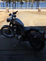 2003 Harley Davidson Sportster XL 1200 C