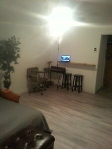 Appartement  Grand 1 et demie 320$internet rue cegep !!!