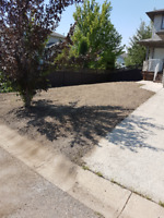 Landscaping and more