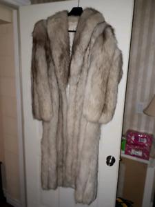 Blue Fox for coat