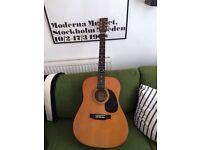 Encore electric/ acoustic guitar