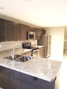 Super clean 2 bedroom basement suite in Stonebridge