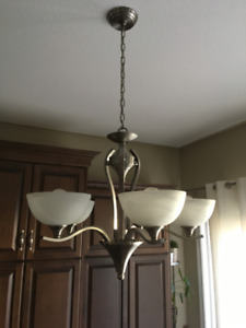 Light fixture- Brushed Nickel Over Dining table & Hallway light