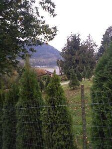 Bayview Home in Lake Errock