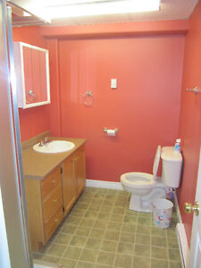 One bedroom apartment for rent St. John's Newfoundland image 6