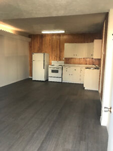 Large and clean 1 bedroom with wifi