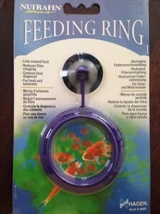 Feeding Ring (Poissons)