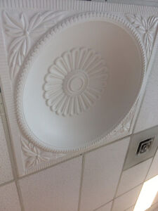 Ceiling light medallion on sale