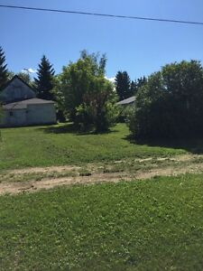 Residential lot for sale in Bawlf Strathcona County Edmonton Area image 3