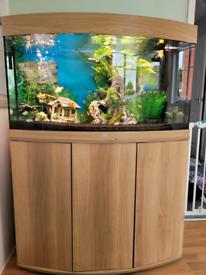 180lt JUWEL fish tank