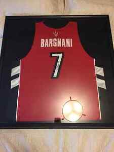 Signed Andrea Bargnani raptors jersey framed to hang on wall