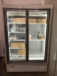 Double Door Display Freezer (Low Temp Merchandiser)