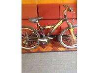 Pulse x8 boys bike. Needs TLC