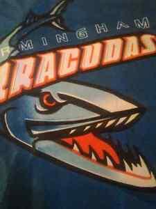 "Birmingham Barracudas 18""x11"" Flag Canadian Football League CFL London Ontario image 2"