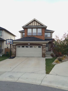 This is the one...spacious new basement & single room available