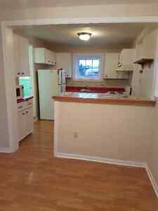 Beautiful one bedroom apartment in cbs St. John's Newfoundland image 3