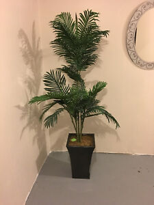 Articial/Fake/Faux Plants - Palm & Bamboo