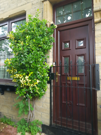 House to Rent - 4 Bed, BD8