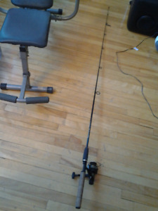 FISHING DAIWA 1350X REEL QUANTUM GRAPHITE ROD