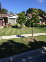 Quality Lawncare&Landscaping