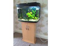 64 litre fish tank / aquarium and cabinet