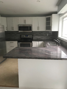 KITCHEN RENOVATION SALE