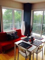 St Henri condo for rent/ a la recherche d'un(e) coloc