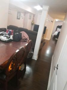 1 bedroom basement in brampton
