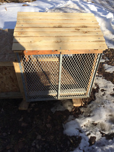 Chicken Coop/Rabbit Hut