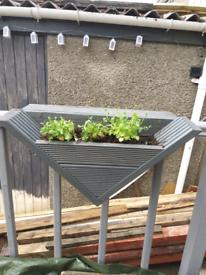 V shaped planters