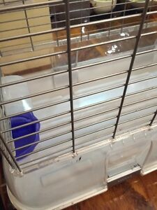 Large Vision cage for sale Kitchener / Waterloo Kitchener Area image 4
