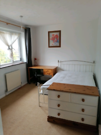 Double room to rent now