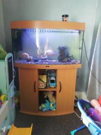 Wood finish 3ft aquarium