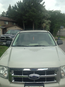 2008 Ford Escape SUV, Crossover XLT
