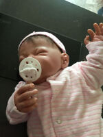 Anyone collect reborn/realborn dolls in the area?