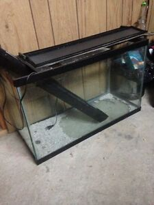 Fish tank with everything you need
