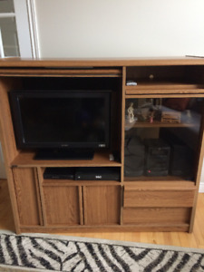 Entertainment Unit/ Storage