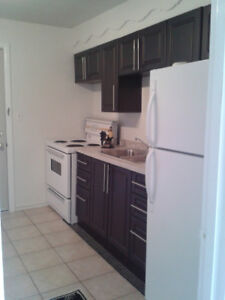 SPACIOUS,E MTN. ONE BEDROOM APT. CLOSE TO REDHILL & LINC,...