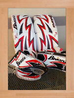 Brian's DX2-PRO Goalie Pads (29+1) w/ Blocker & Catch Glove