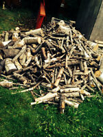 Fire wood.  $100 for truck load
