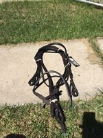 Halters and English Bridles for sale