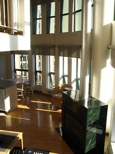 ONE OF A KIND, BEAUTIFUL PENTHOUSE LOFT, GREAT VIEWS, IN GASTOWN
