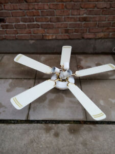 ceiling fan with lights for sale #34343
