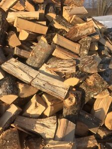 Hardwood firewood. Full cord delivered Kingston Kingston Area image 1