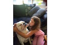 Bulldog offers